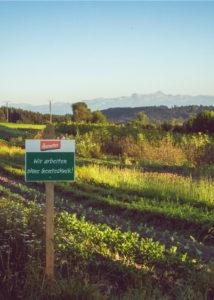 lautenbach_arbeiten_landwirtschaft